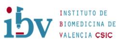 INSTITUTO DE BIOMEDICINA DE VALENCIA CSIC