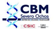 CBM SEVERO OCHOA